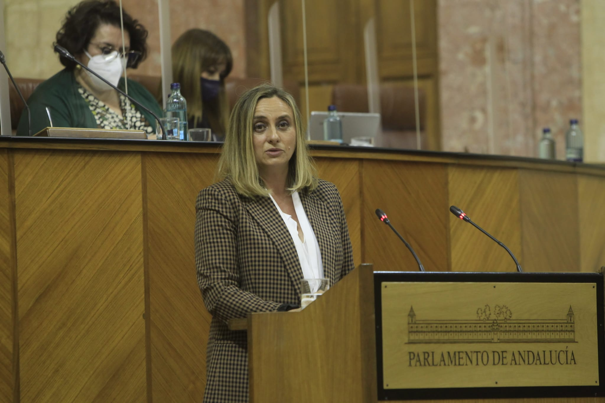 MARIFRÁN CARAZO EXIGE AL GOBIERNO AGILIZAR LAS CONEXIONES FERROVIARIAS CON LOS PUERTOS