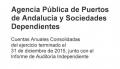 Cuentas Anuales Consolidadas 2015